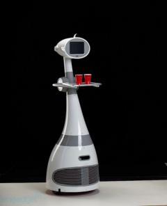 Luna : robot domestique et prix bas