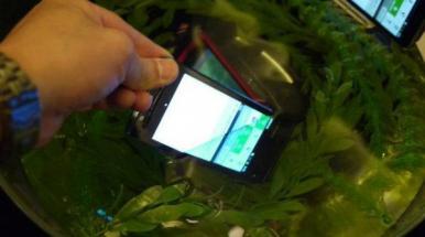 CES 2012: Android dans l'eau avec Fujitsu